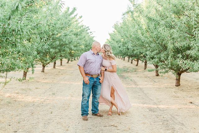 These creamy greens and blush pinks photographed so well in the golden hour light last night!  _  _  #engagementstyle #engagementshoot #engaged #engagementphotos #sacramentoweddingphotographer