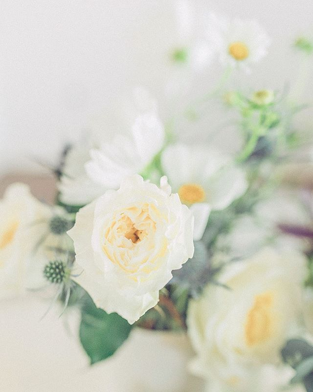 Pretty blooms always make me go 😻  _  _  Photographer | @laurenalissephotography  Venue | @arborvenues  Wedding Planner and Owner of Arbor Loft | @agathico  Florist | @pistilandpollen  Hair and Makeup | @blushbeautyroc  Invitation Suite | @ginatyler_creations  Caterer | @hoganshideaway  Cake | @scratchbakeshoproc  DJ | @encoreevents  Quartet | @quartet442  Dress | @lovelybriderochester  Officiant | Bri DeLorenzo  Vintage Furniture Rentals | @revivalrental  _  #rochesterwedding #rochesterweddingphotographer #destinationweddingphotographer #newyorkwedding #newyorkweddingphotographer #loftwedding #minimalistwedding #weddinginspo #sacramentoweddingphotographer