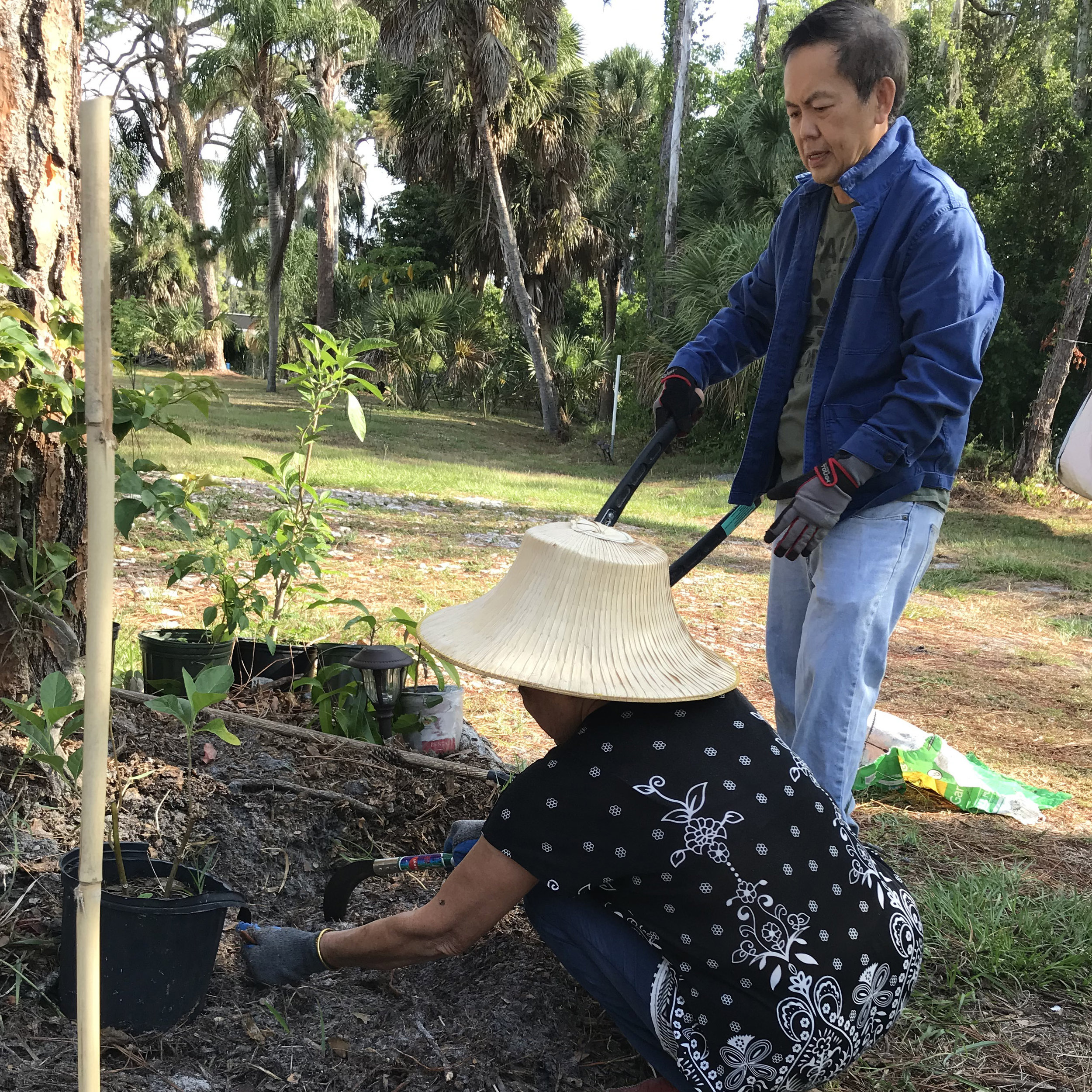 gardening-3.jpg
