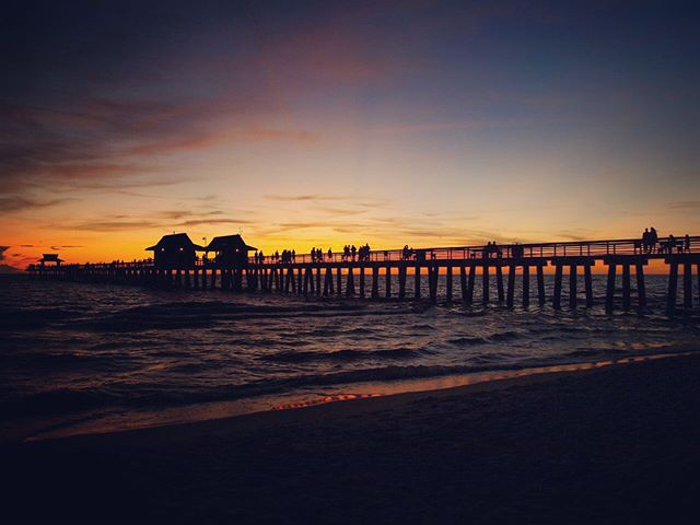 Naples is the perfect town for nature lovers, beach goers, gardeners, shoppers and history buffs alike. There is always something for everyone to enjoy! With season quickly approaching, I've found a list of the top things to do in Naples, Florida - see the link in my bio. 🌴🌞🌊 . . . . #naplesflorida #naples #florida #paradisecoast #gulfofmexico #naplespier #naplesfishingpier #premiersothebysinternationalrealty #realestate #salesassociate #thingstodoinnaples #beachtown