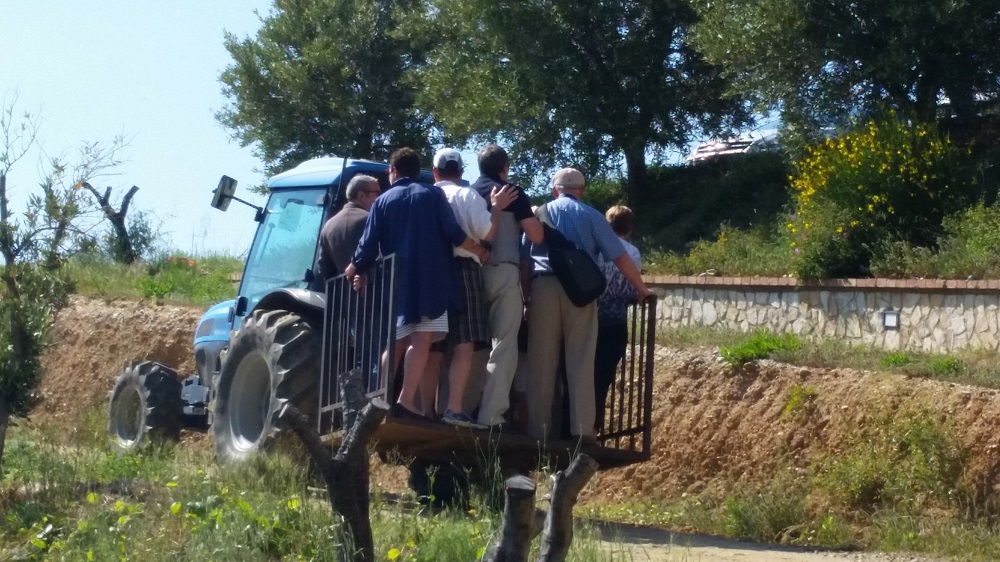 Tour of the vineyards ... on a tractor!