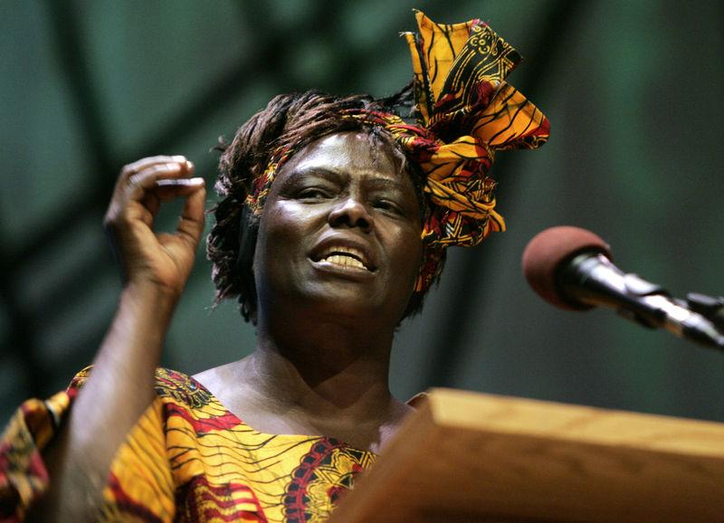 Wangari-Maathai-those-african-chicks.jpeg