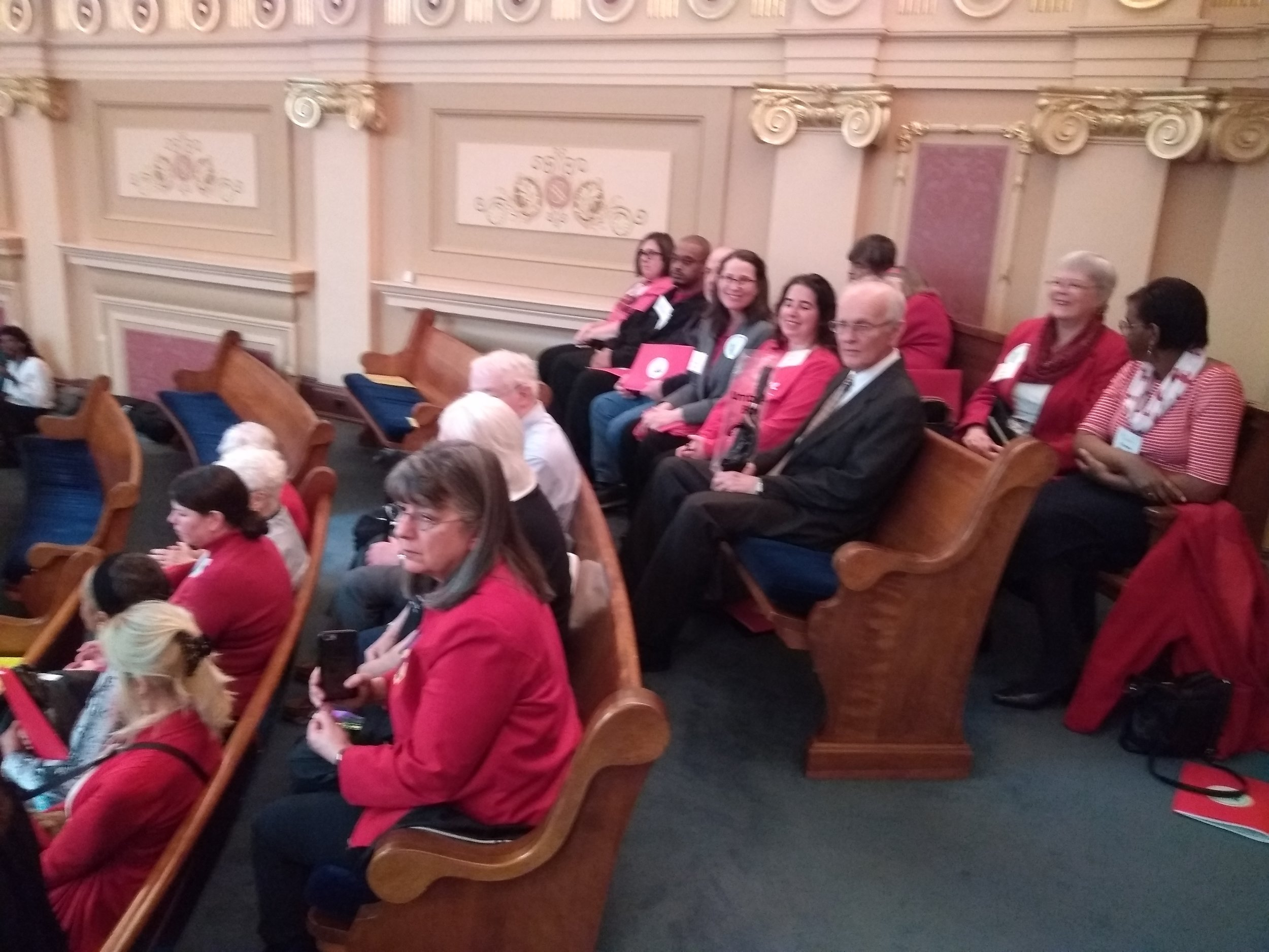 Some of our Supporters gathered in the Gallery to encourage those who voted against the ERA.