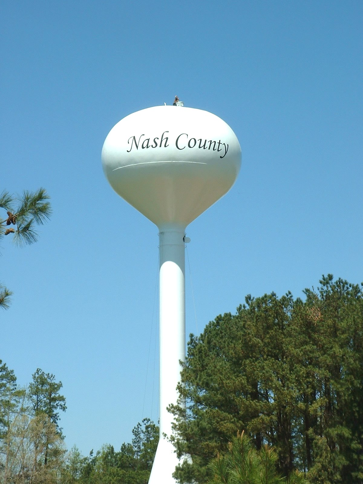 Central Nash's Water and Sewer