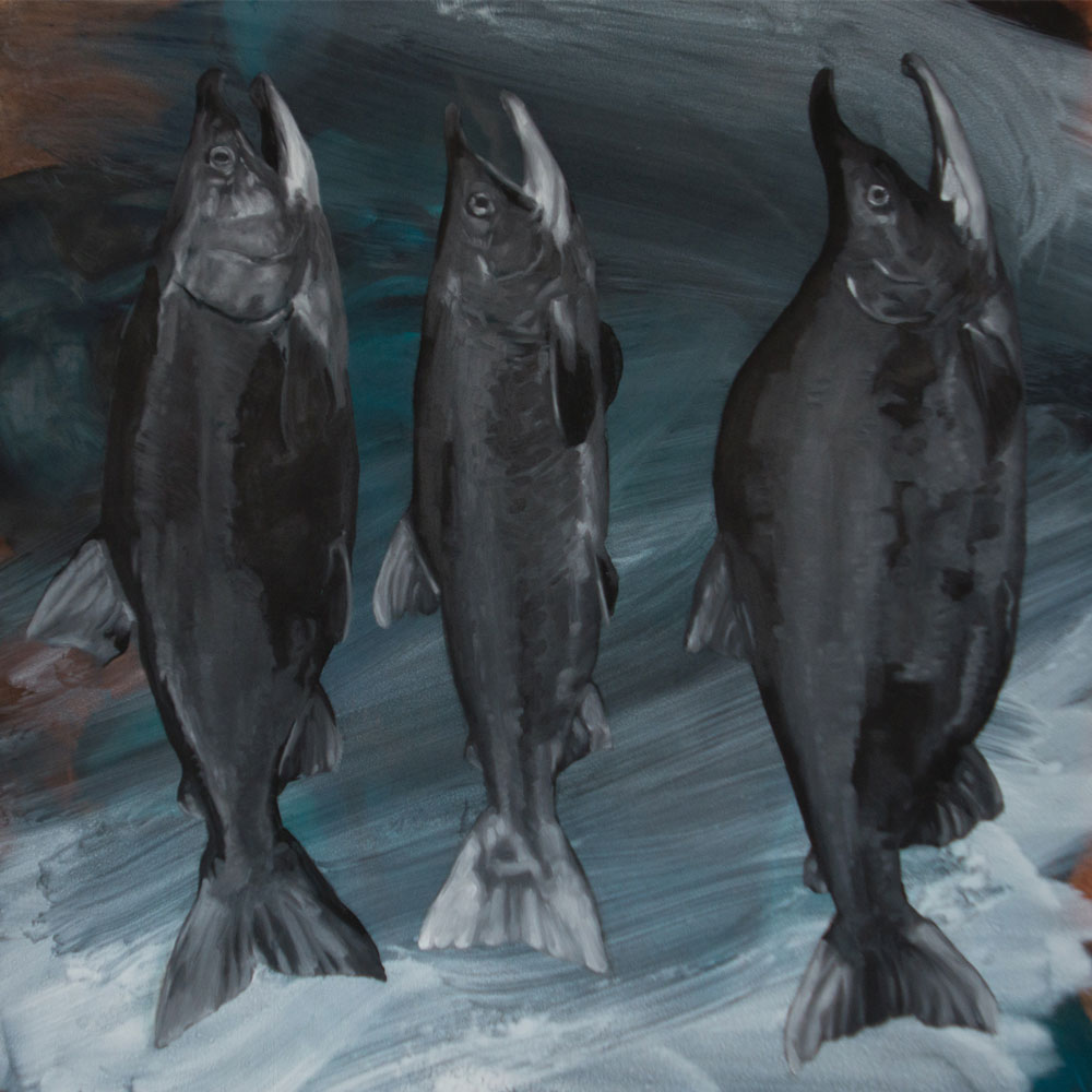 Three Salmon