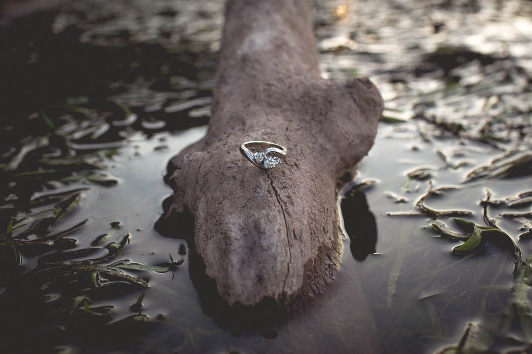 York_Engagement_Cambria_Creative-3072.jpg
