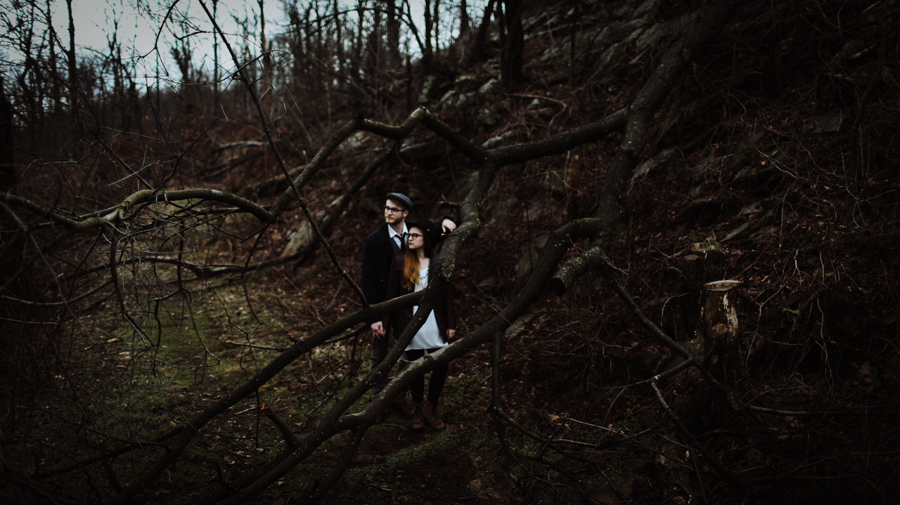 Cambria_Creative_Harrisburg_Engagment_Photography-3816.jpg