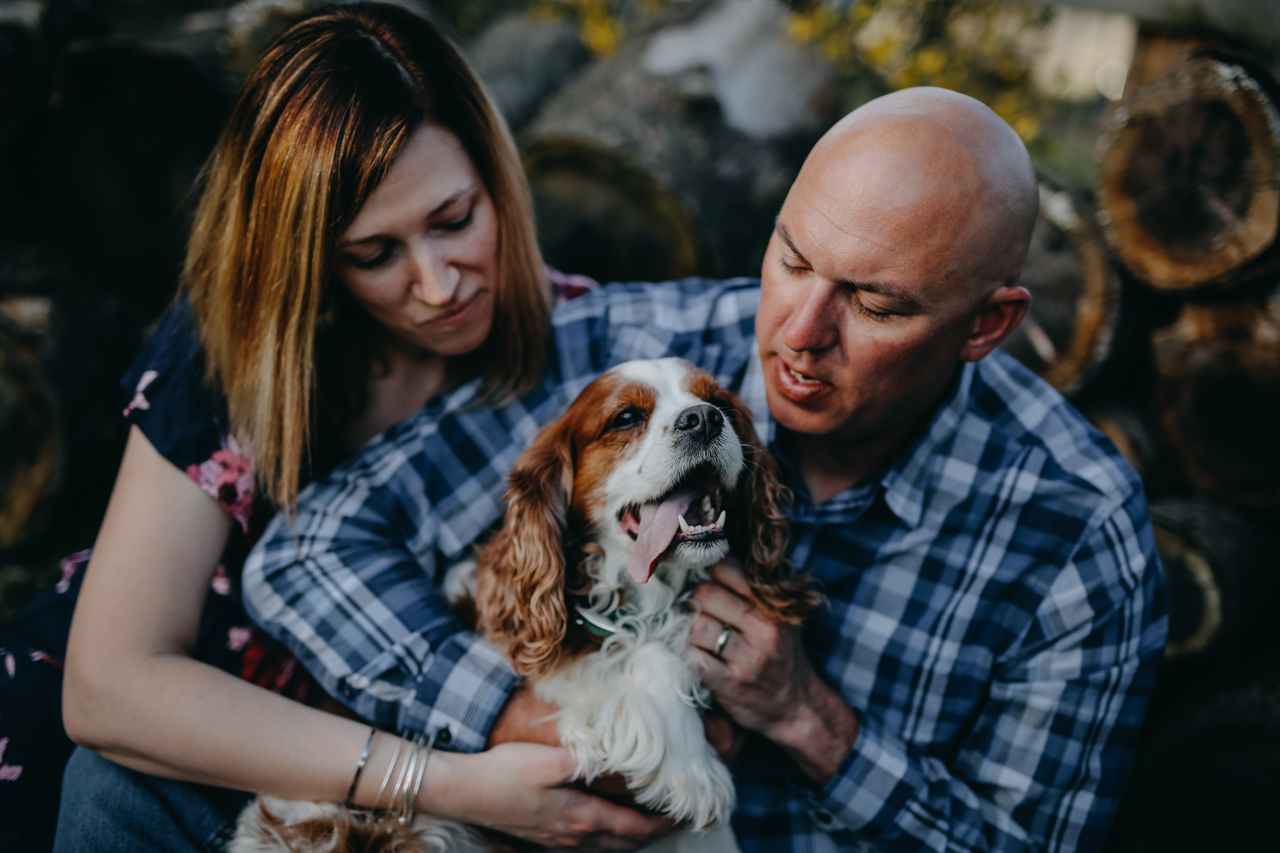 Cambria_Creative_Photography_Puppy_Portrait_Lancaster_Family_Session-5424.jpg