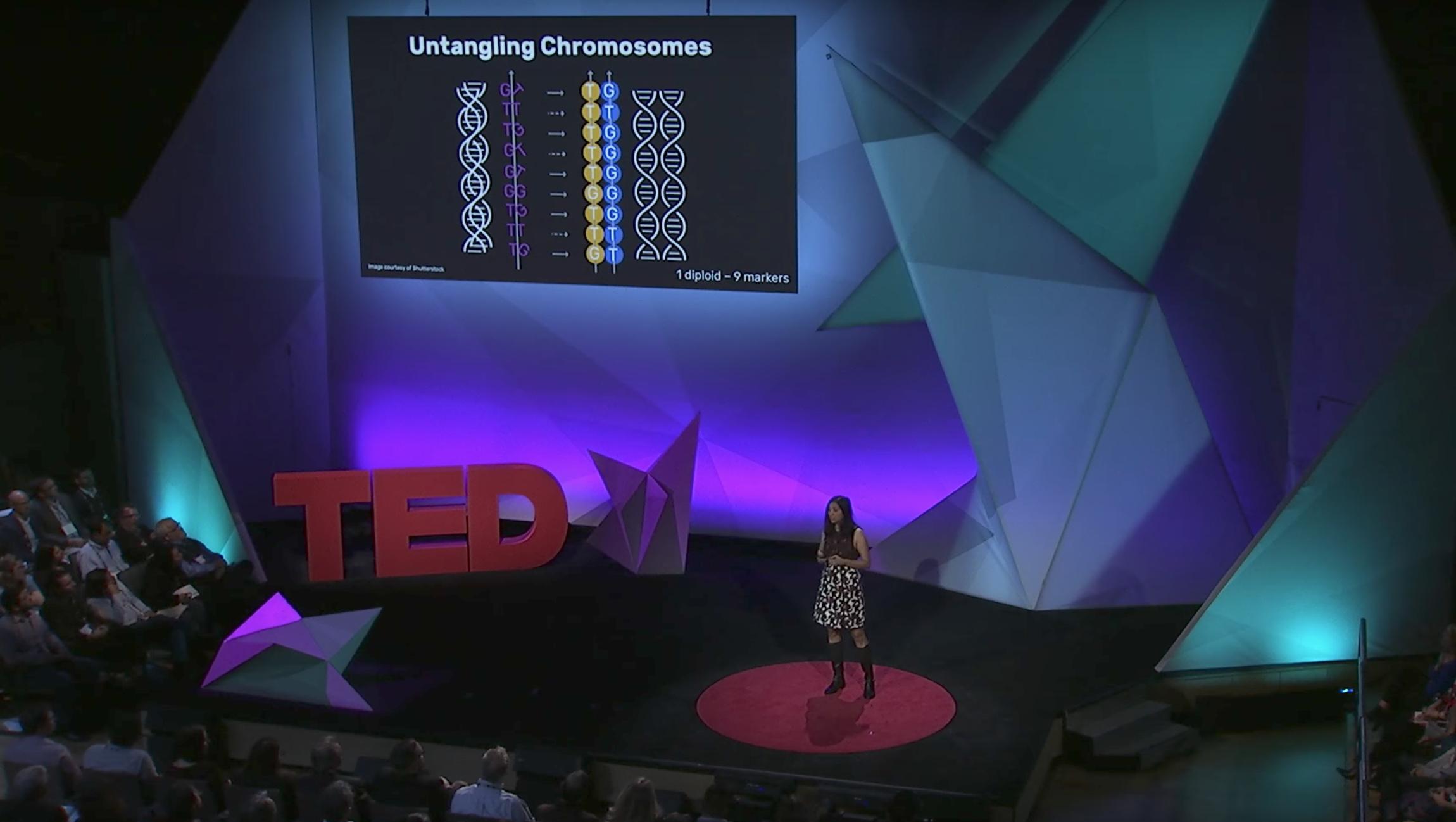 Photo via TED@IBM