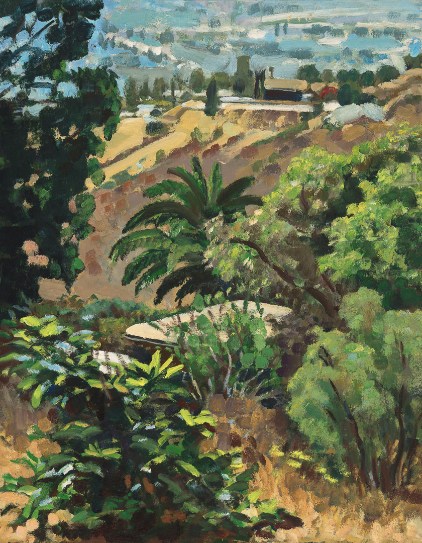 Date Palm and view of Lemon Grove