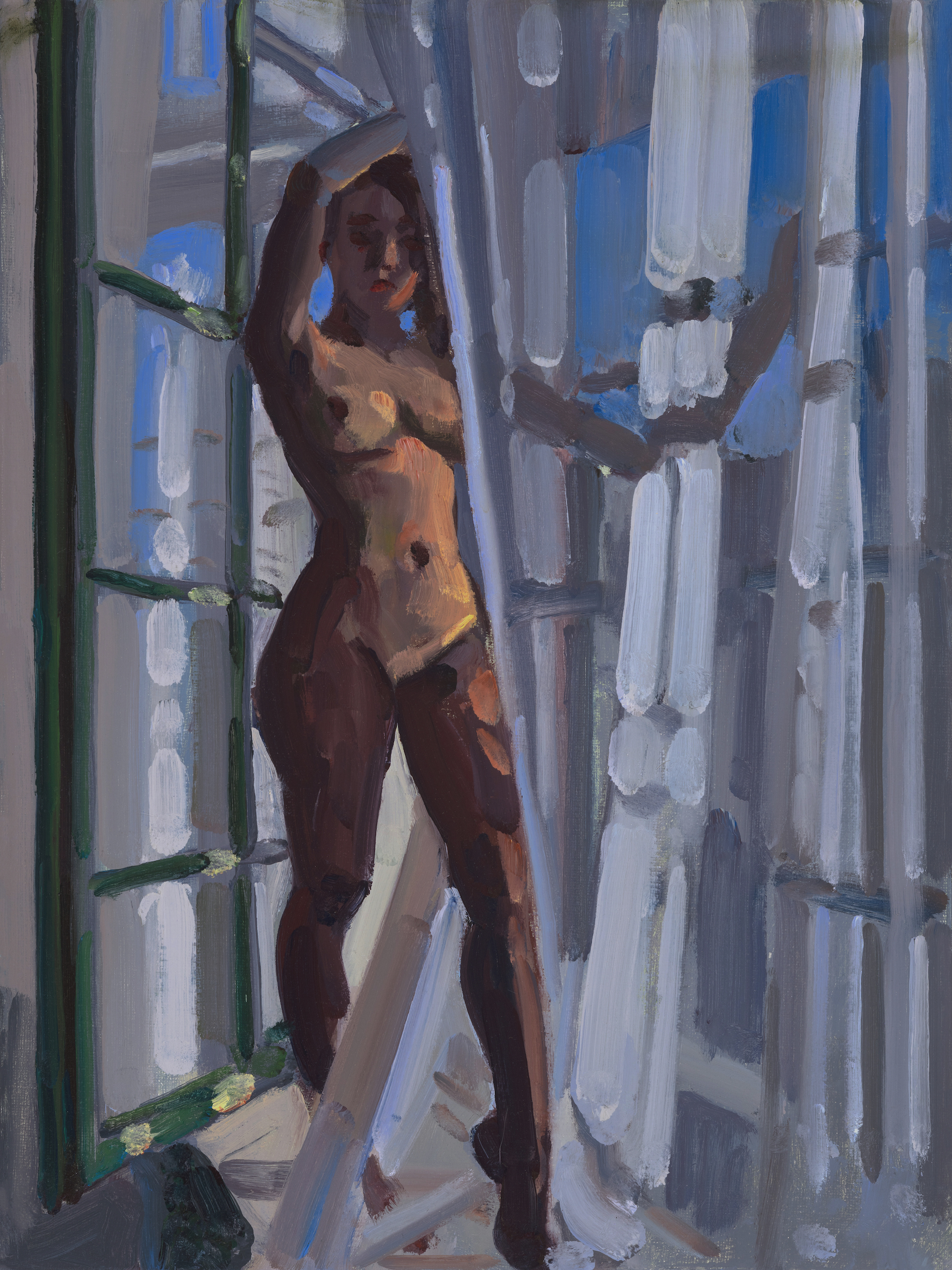 Nude in a Walk Through Window