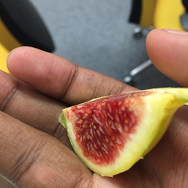 Tiger stripe figs fresh from California #nofilter #freshofftheplane #workperks #tasting
