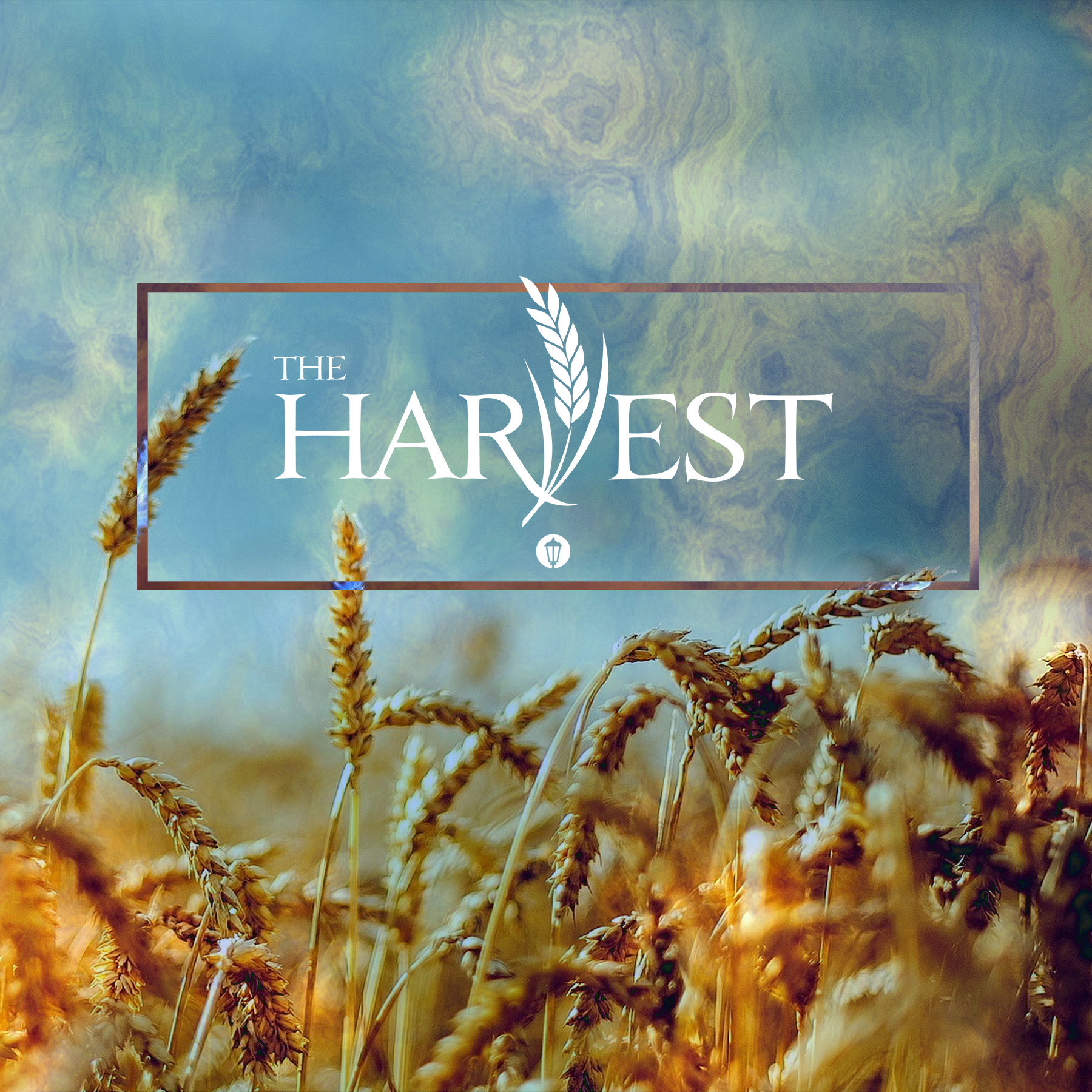 The Harvest -  instagram 2.jpg