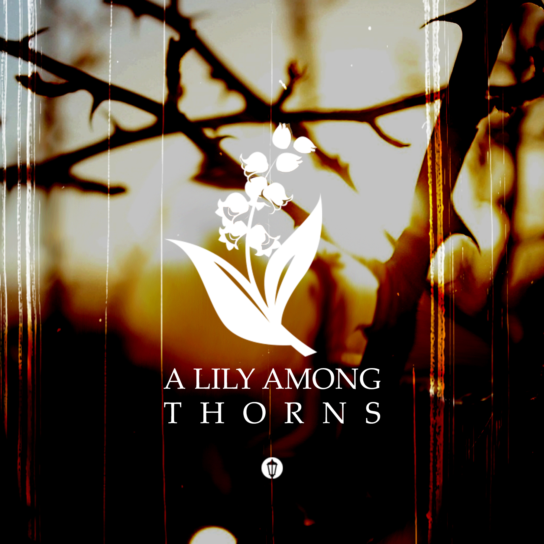A Lily Among Thorns - title slide.jpg