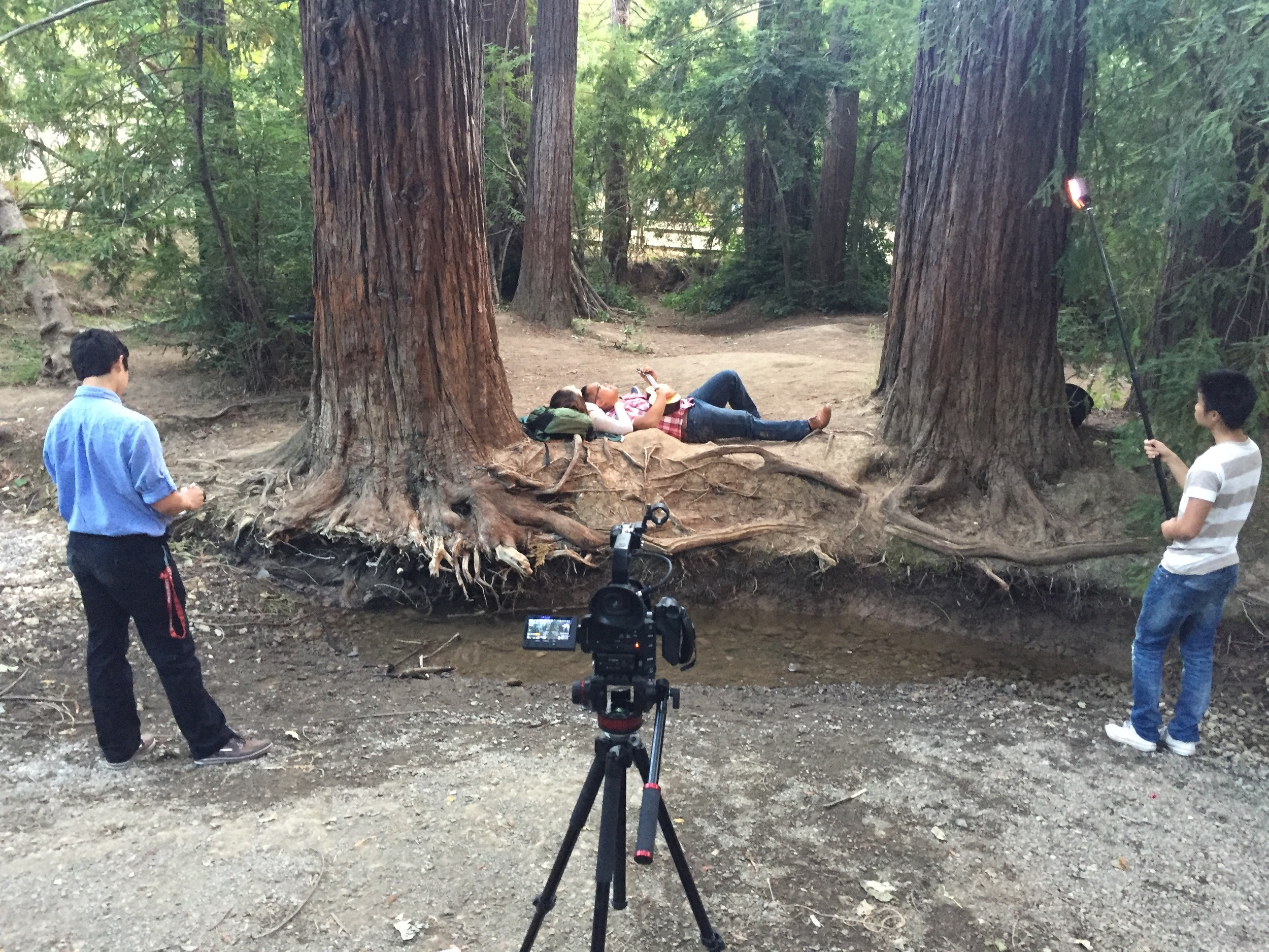 "On set of the ""Interpretations Project."" - Redwood Grove in Los Altos"