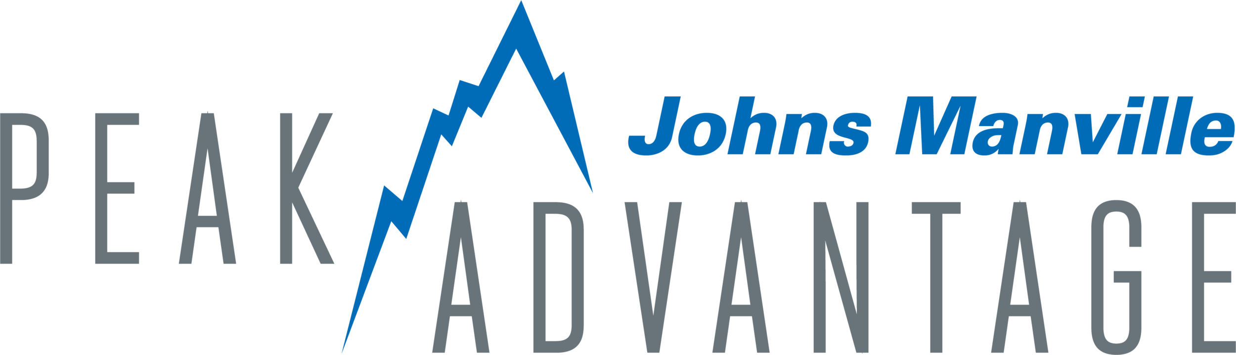 Peak Advantage logo.png