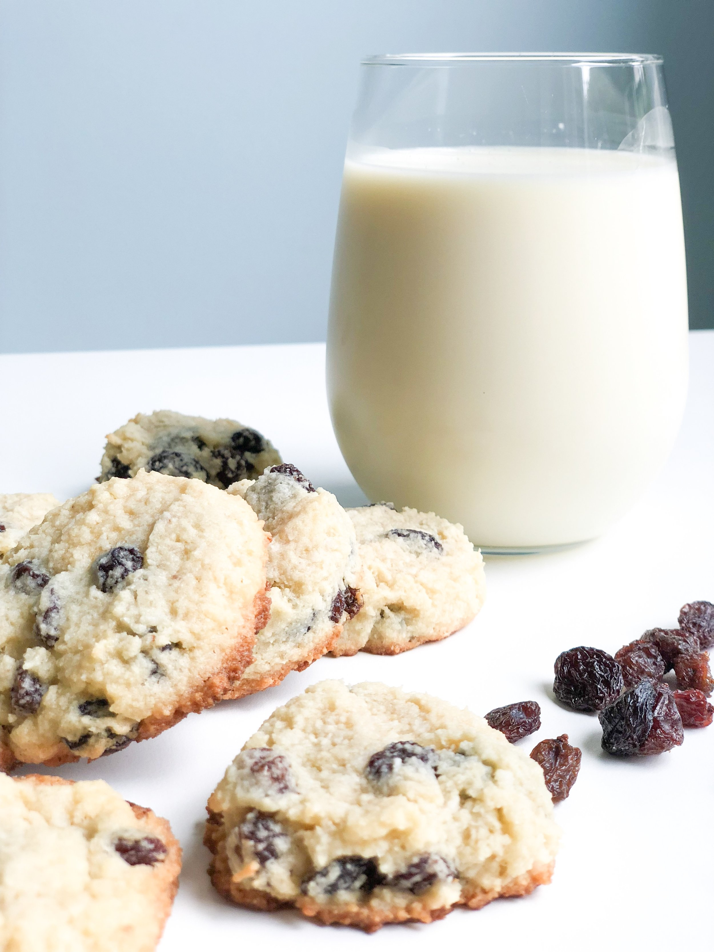 grain free oatmeal raisin cookies.JPG