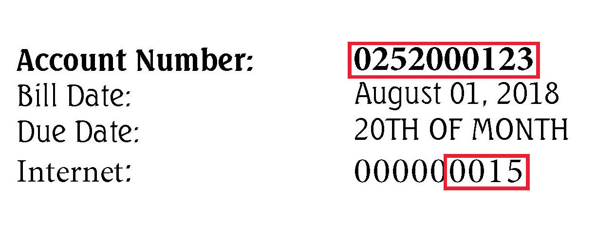 'Service Account' is your Account Number. 'Secret' is  252  (Evertek) or  253  (N.E.T. Broadband) plus the 4 digit Internet number, as shown in the red box. In the example above, it would be 2520015 if you're an Evertek customer or 2530015 if you're an N.E.T. Broadband customer.  If you do not see a number in the 'Internet' area or you have trouble setting up your account, please call our office.