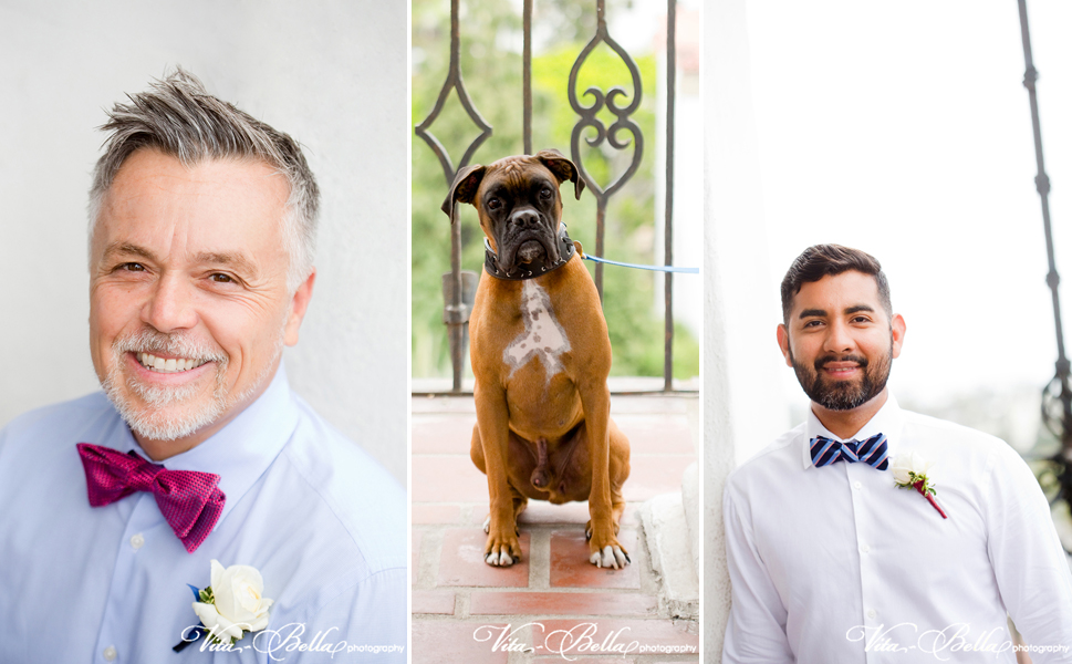 santa barbara courthouse gay wedding grooms and dog