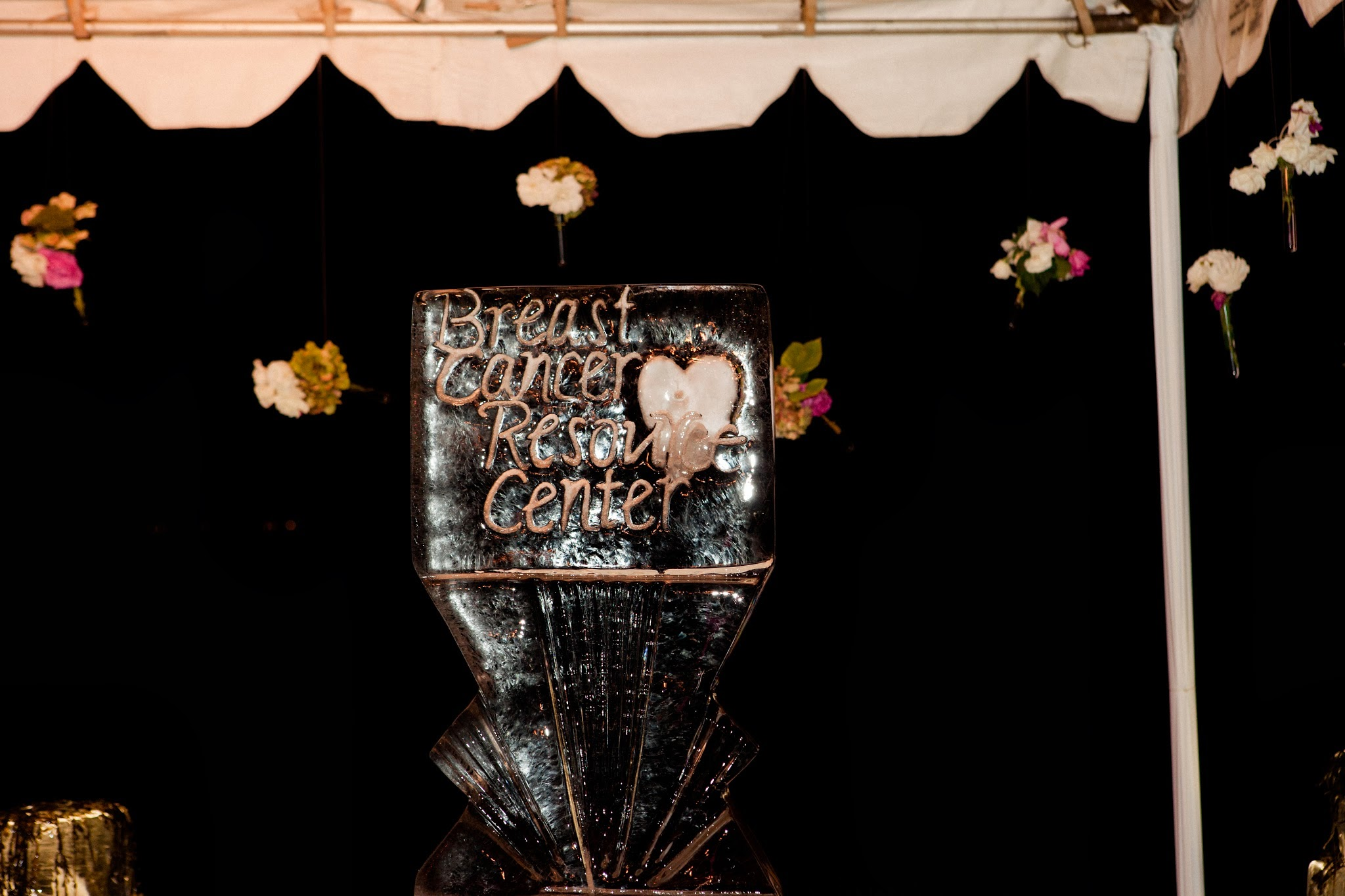 www.FeliciEvents | Pink Polo Party | Funraising Event | Felici Fundraiser | Polo Theme | Clarissa Koenig Photography | Ice Sculpture