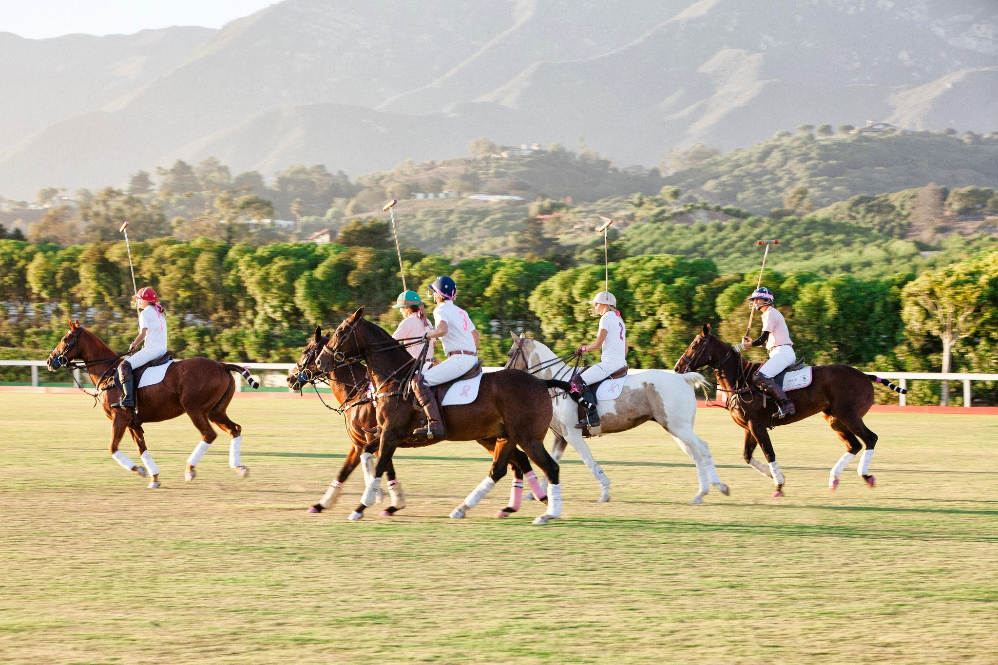 www.FeliciEvents | Pink Polo Party | Funraising Event | Felici Fundraiser | Polo Theme | Clarissa Koenig Photography | Polo Match