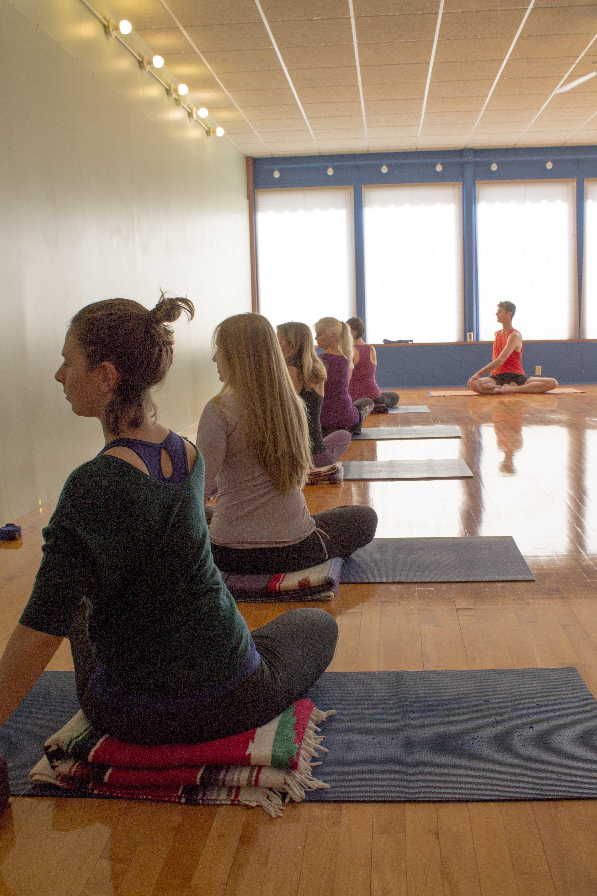 MSYC-Yoga-Asana-IMG_2392.jpg