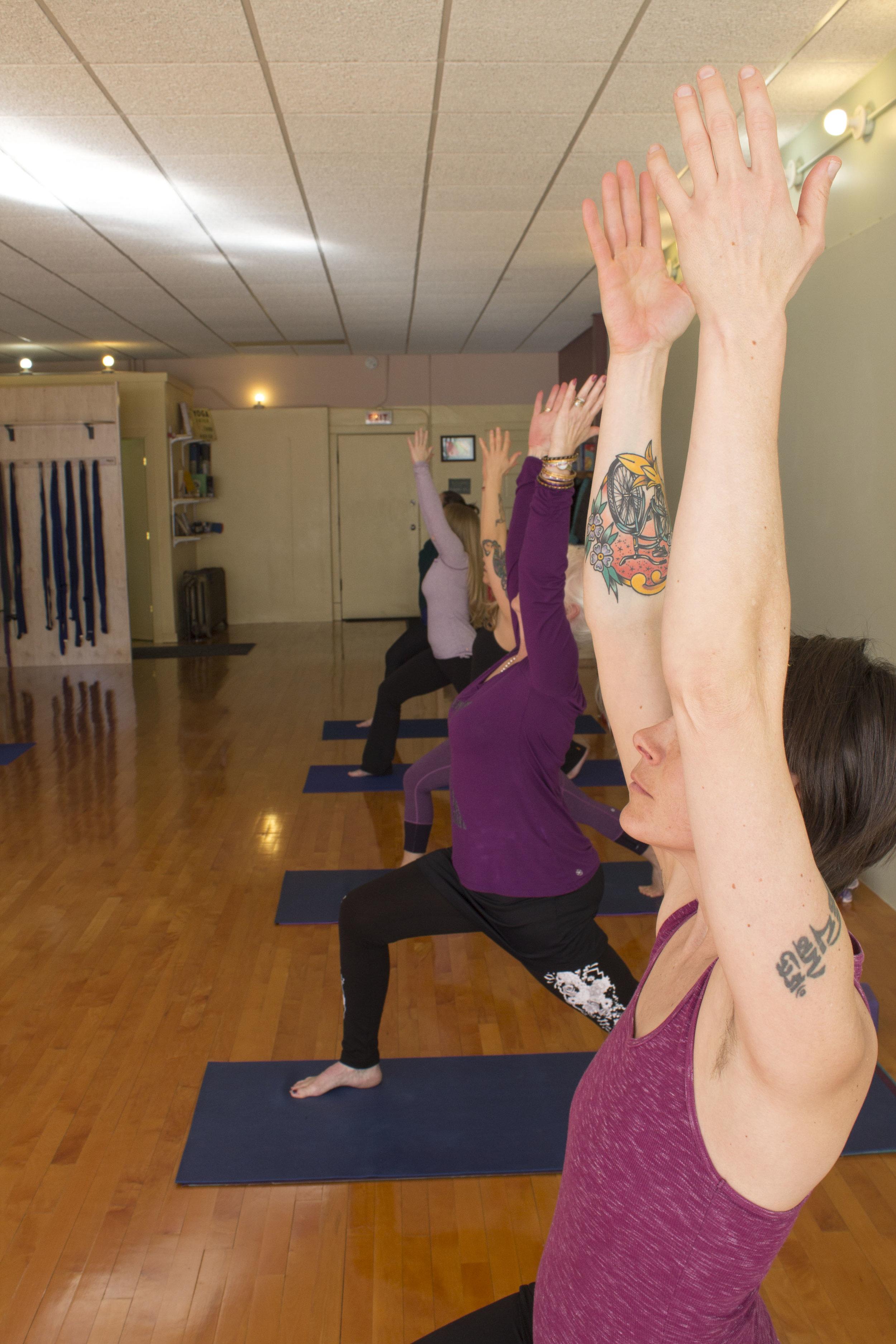 MSYC-Yoga-Asana-IMG_2343.jpg