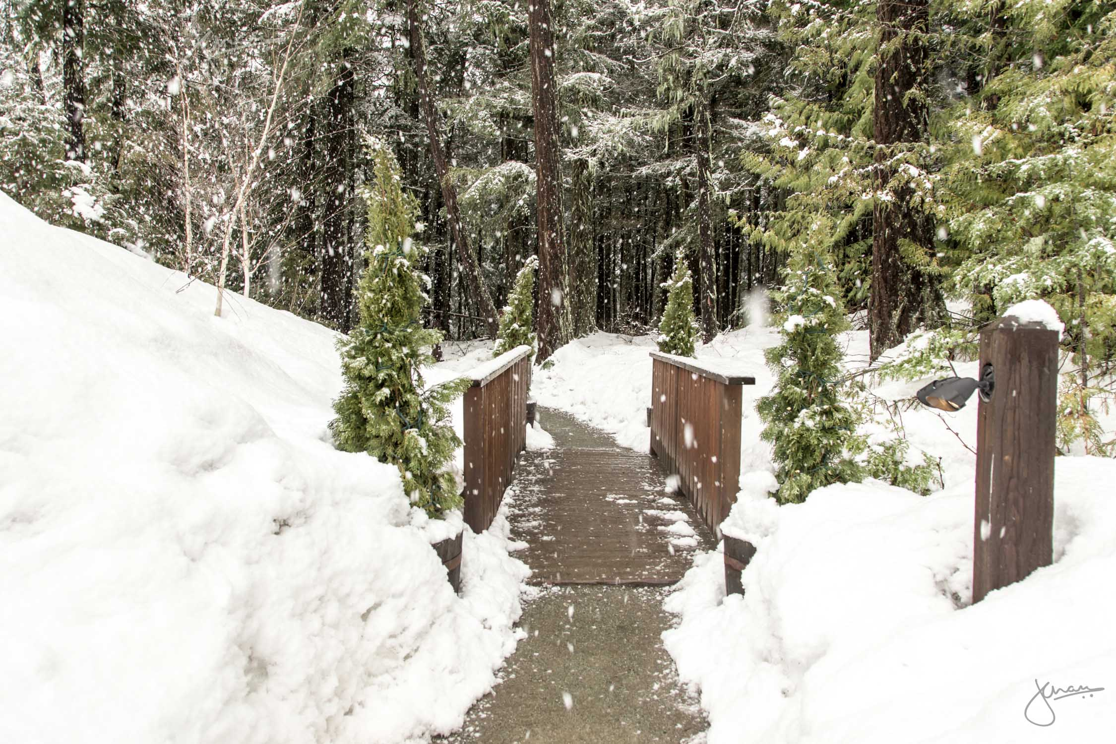 Tranquil trail leading to the Scandinave Spa
