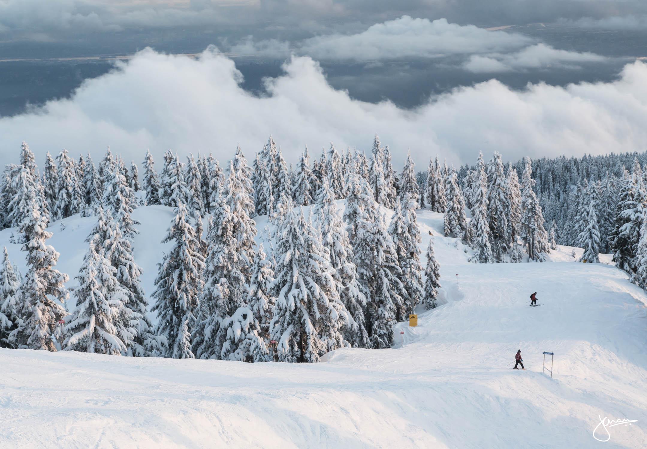 Skiers heading down a run