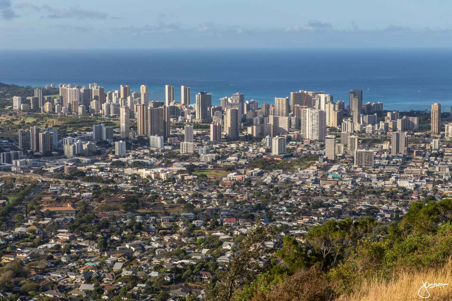 Pu'u 'Ualaka'a State Park - Looking towards Waikiki, Downtown, & Honolulu