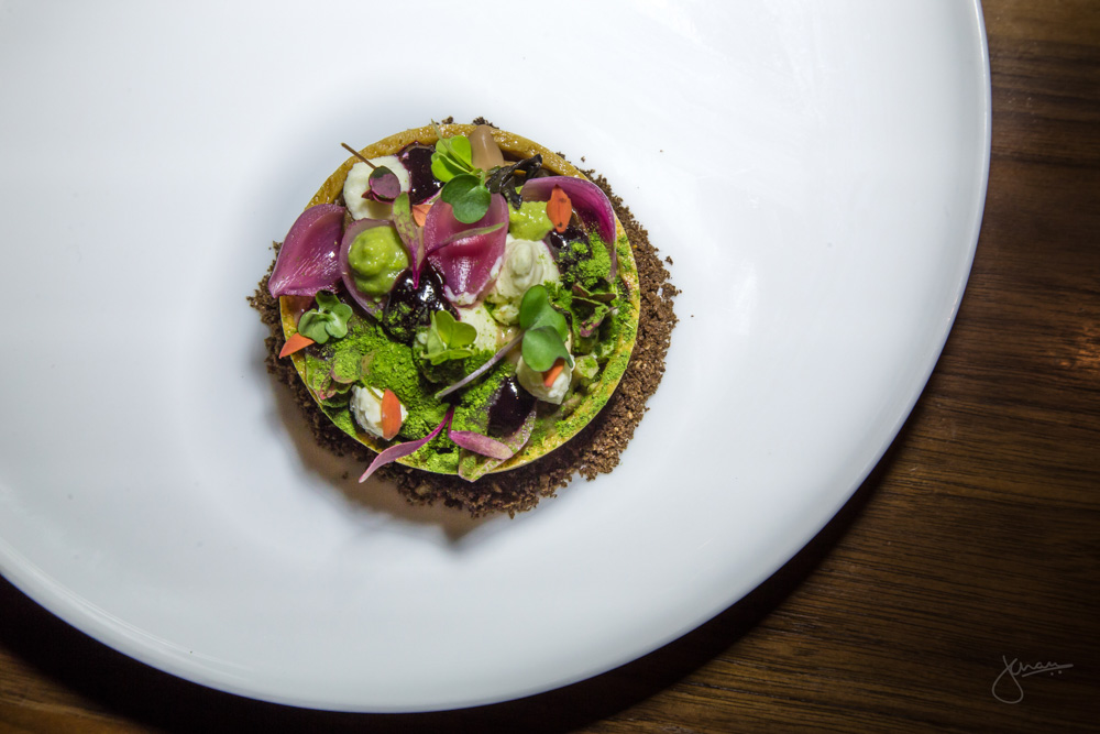 Forest Mushroom Tart - BC Winter mushrooms, fromage frais, chestnuts, wild onion elderberry spruce