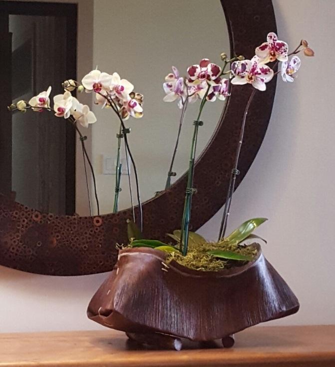 Shelley Hoist Zen Orchid Basket.jpg