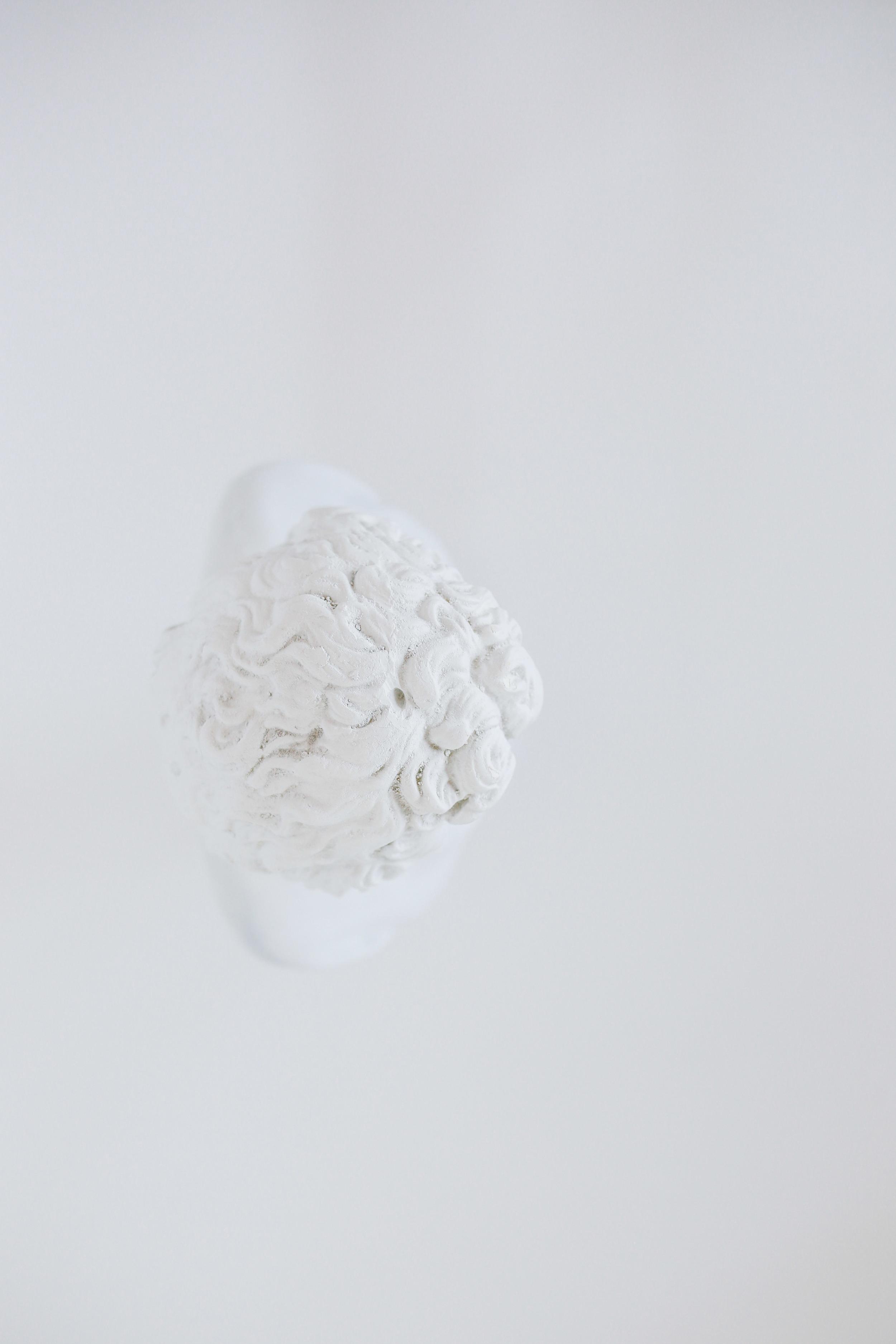 Edited White Series (8 of 9).jpg