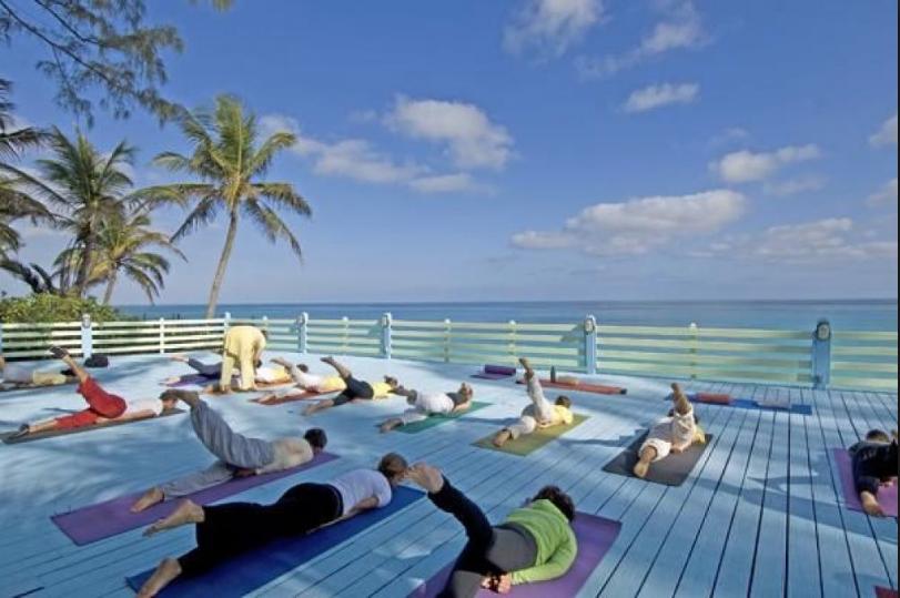 Sivananda Yoga Classes -