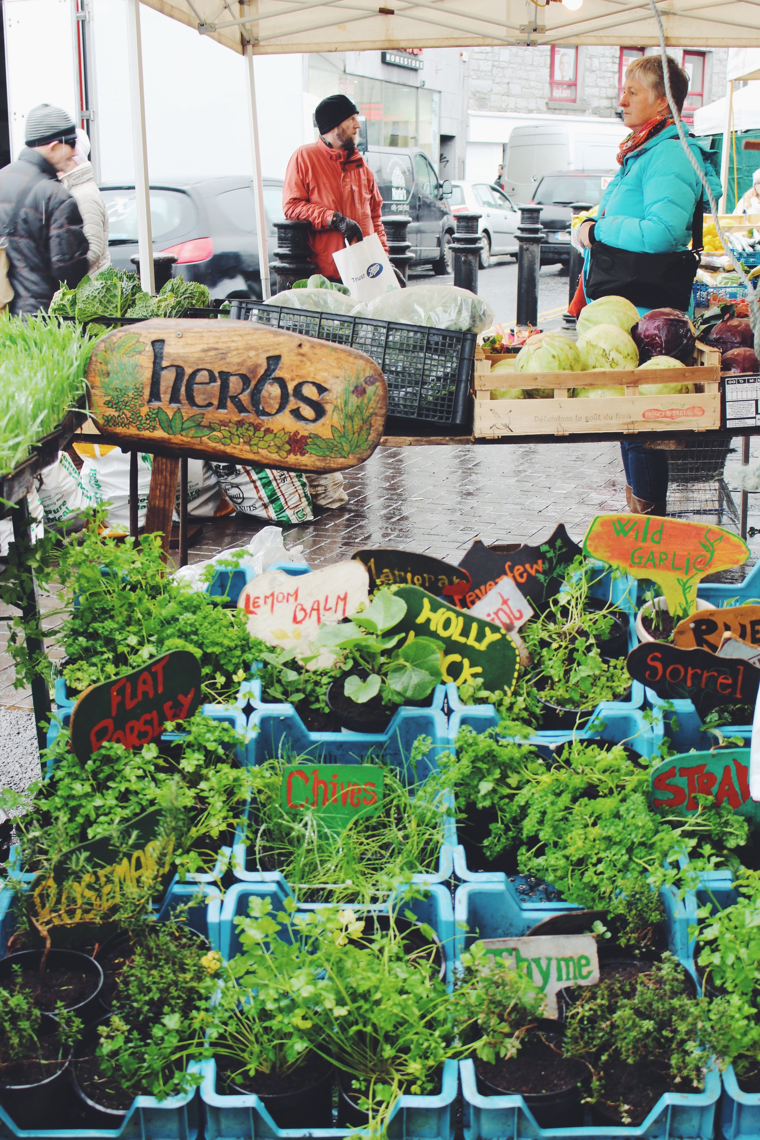 herbs at market galway.jpg