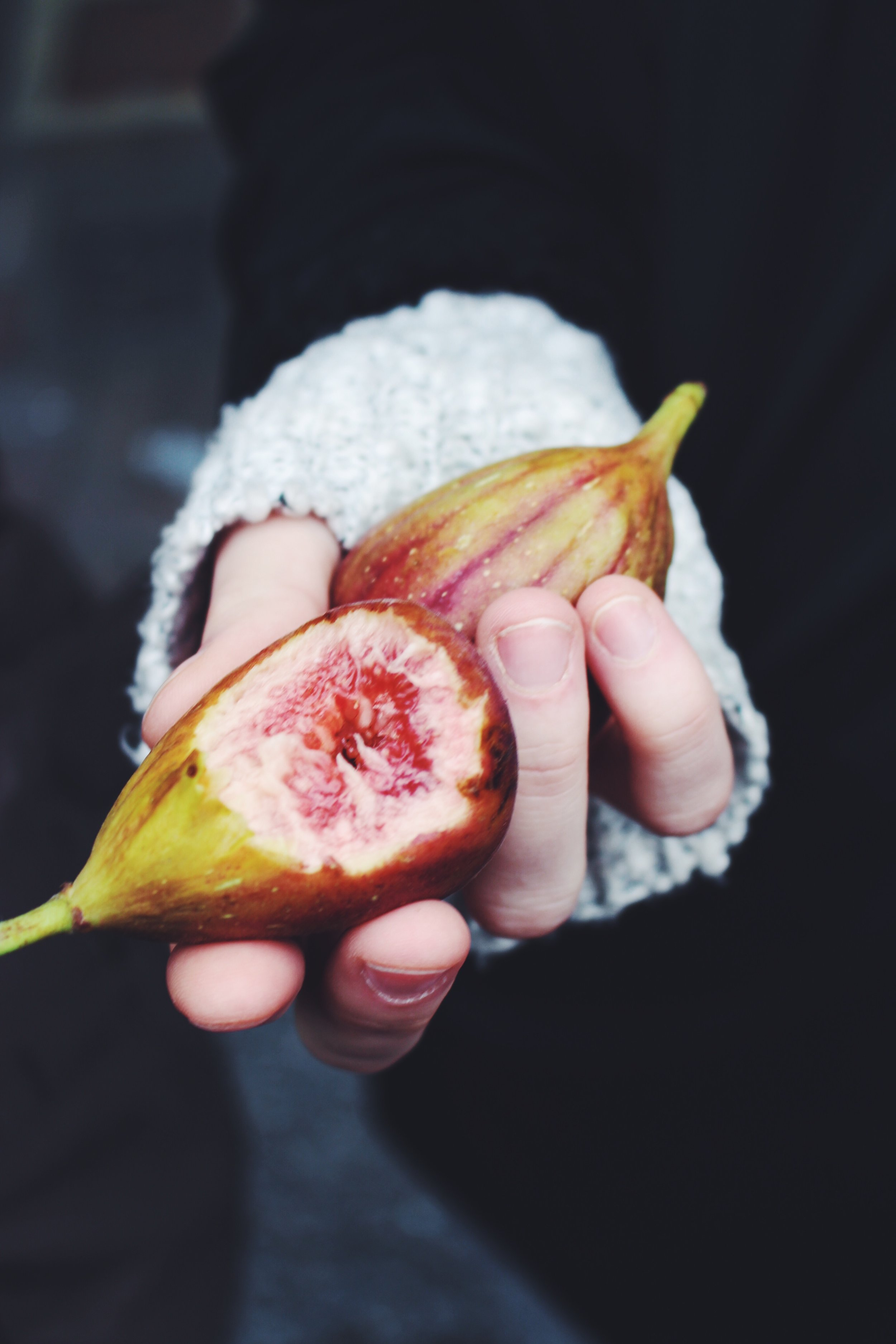 figs in hand galway copy.jpg