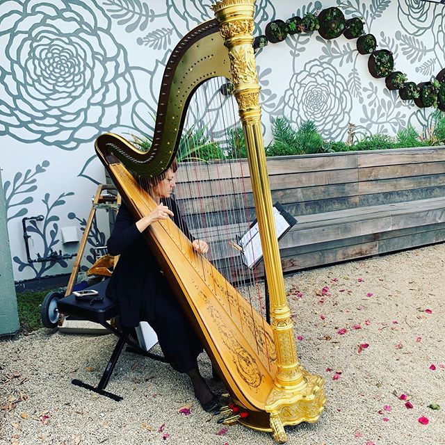 How beautiful is Wendy's harp tho? Swipe to see this thing in action. 👀🤯