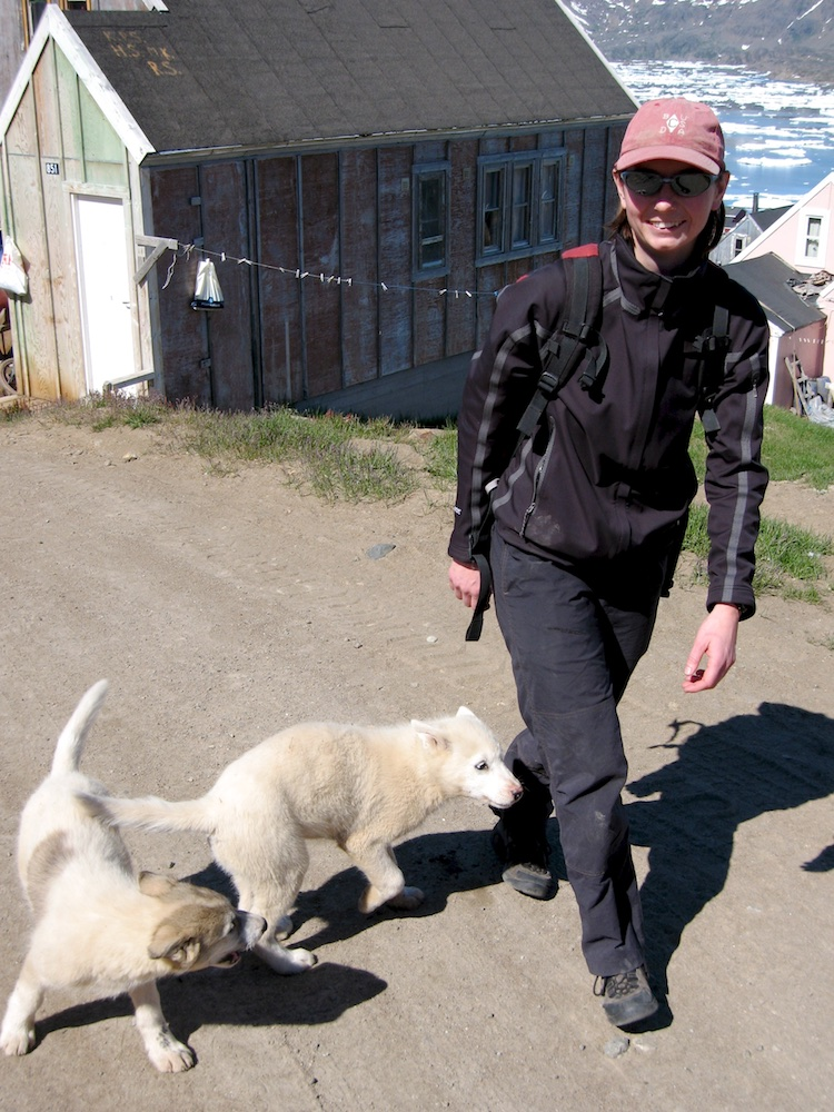 These Greenland sled dog puppies took a liking to Tash