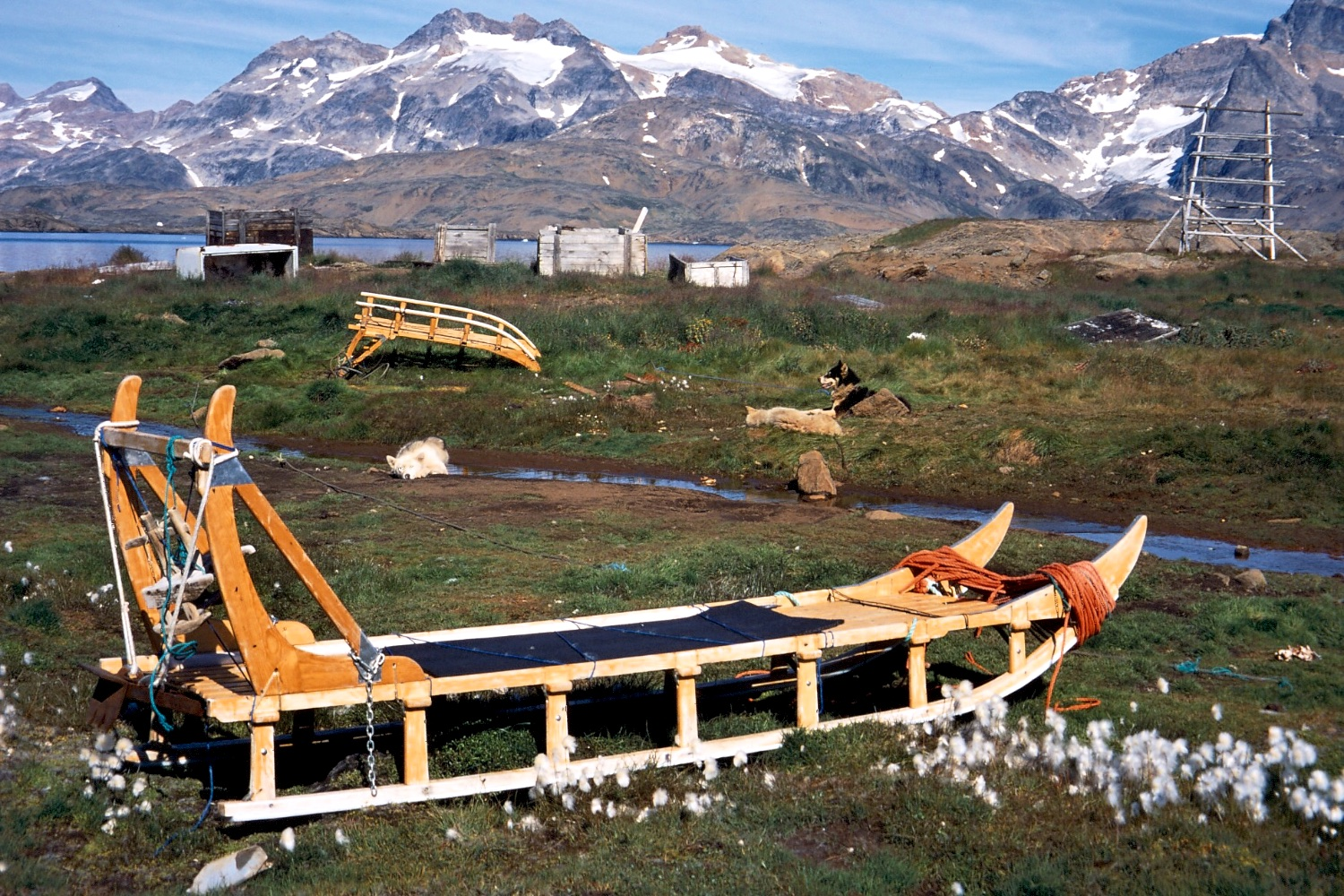 Sleds and Greenland sled dogs sit around until winter. Seeing the dogs made us think we'd love to return one day and travel by dog sled.