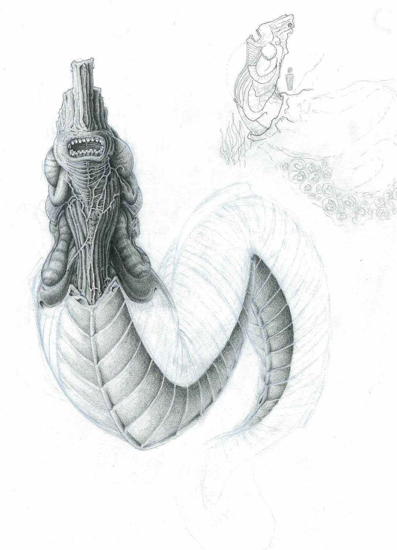 Eel.jpg