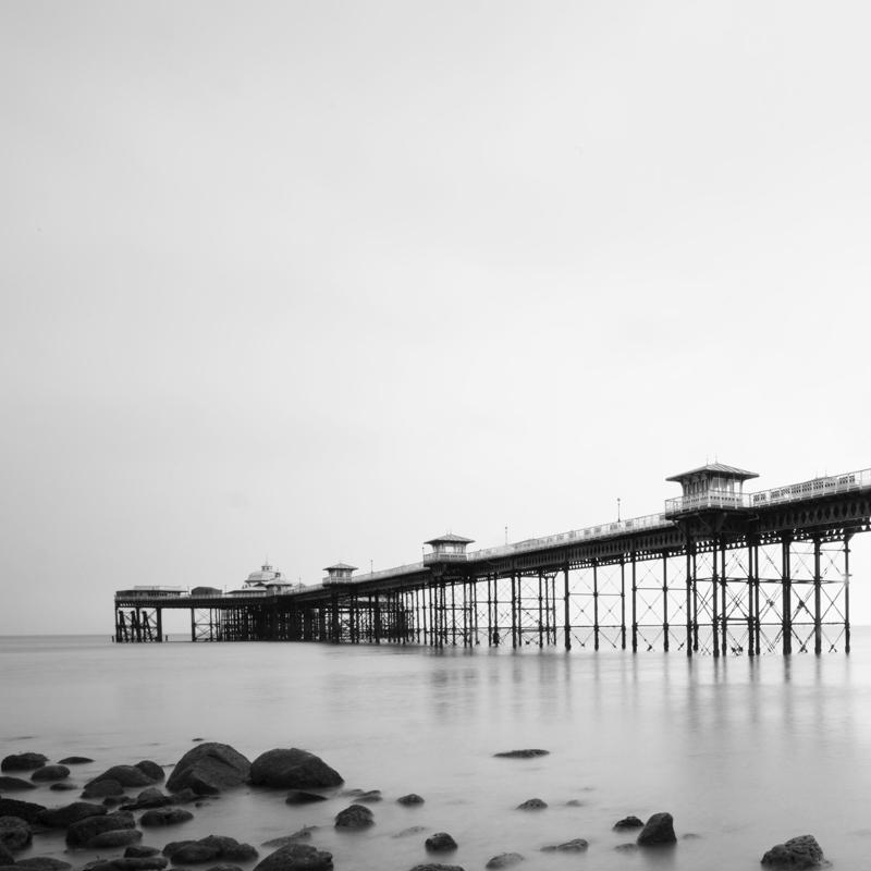 black and white--5.jpg