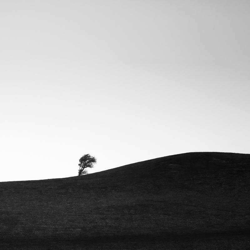 black and white-5510.jpg