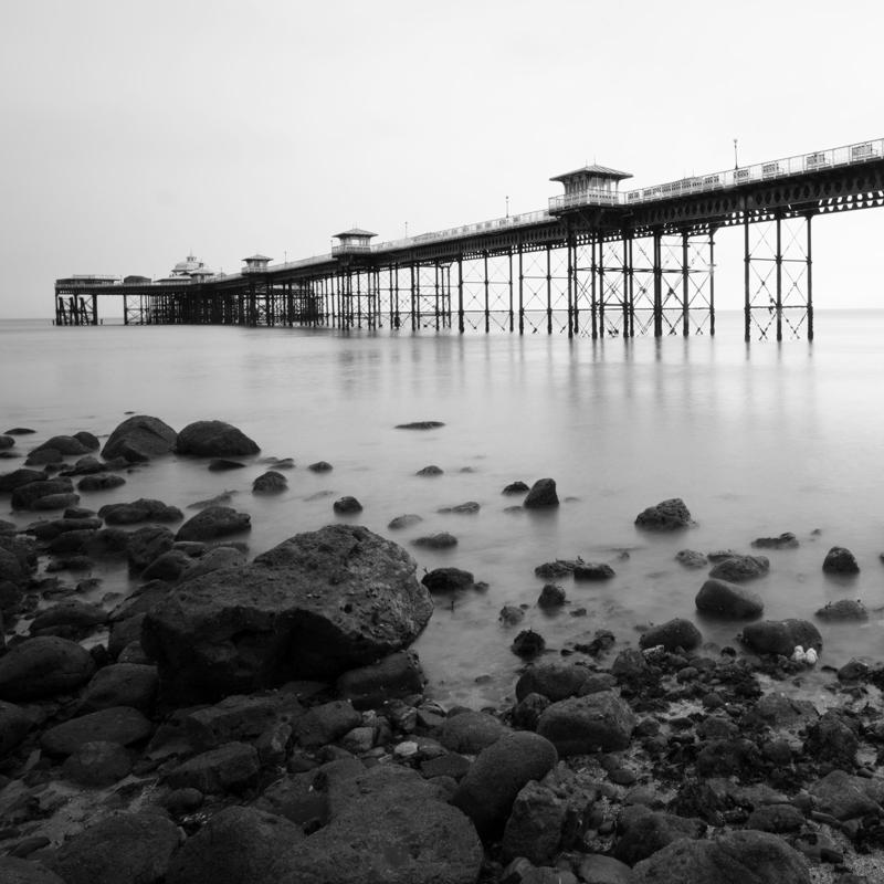black and white--4.jpg