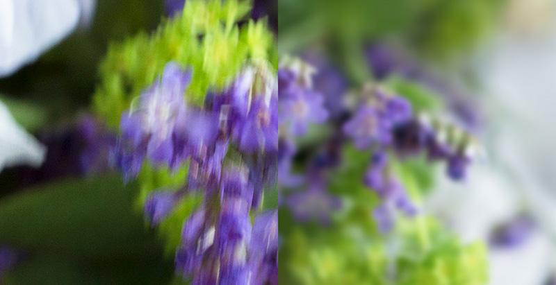 compare camera shake and focus.jpg