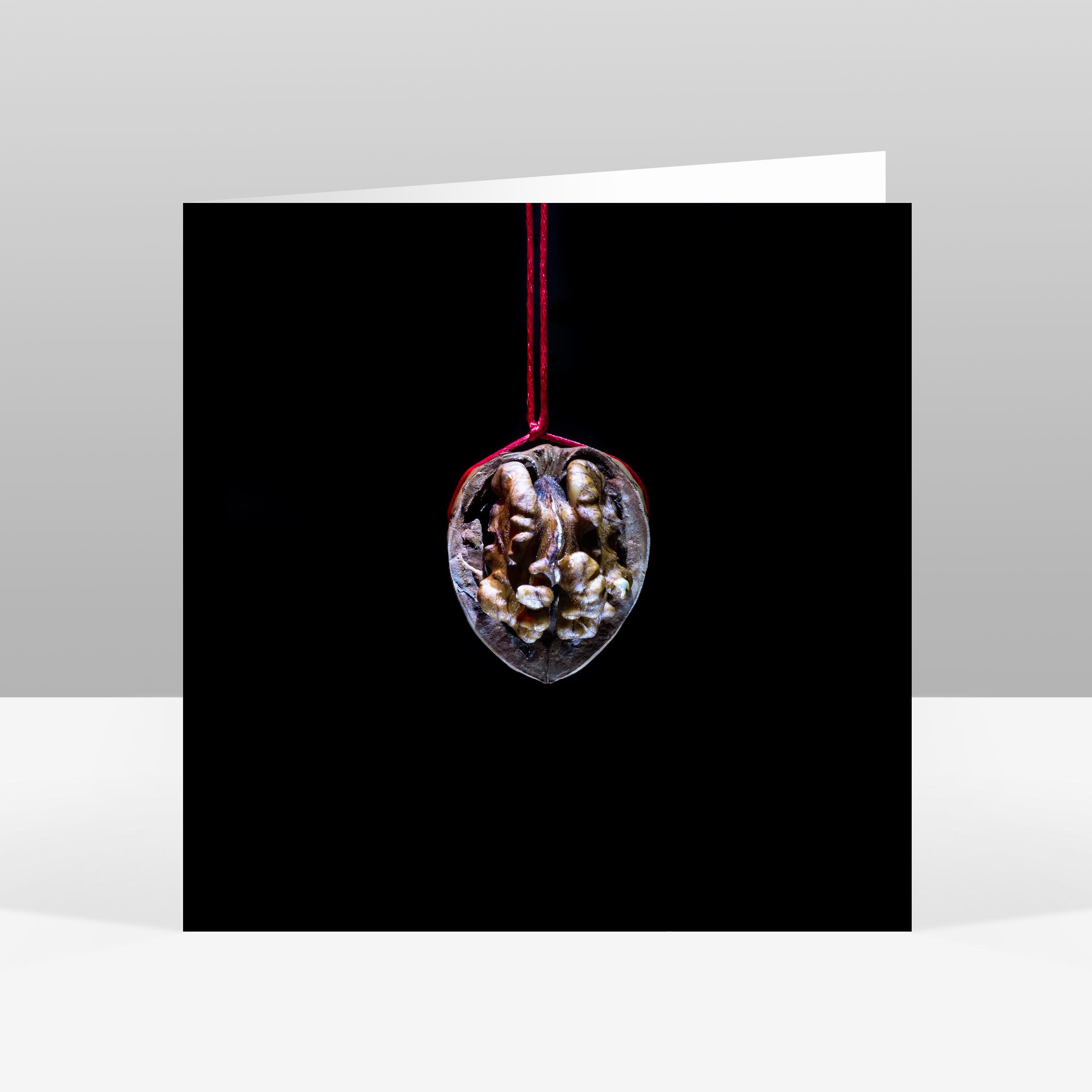 5 Walnut Christmas Card Jo Hounsome Photography.jpg