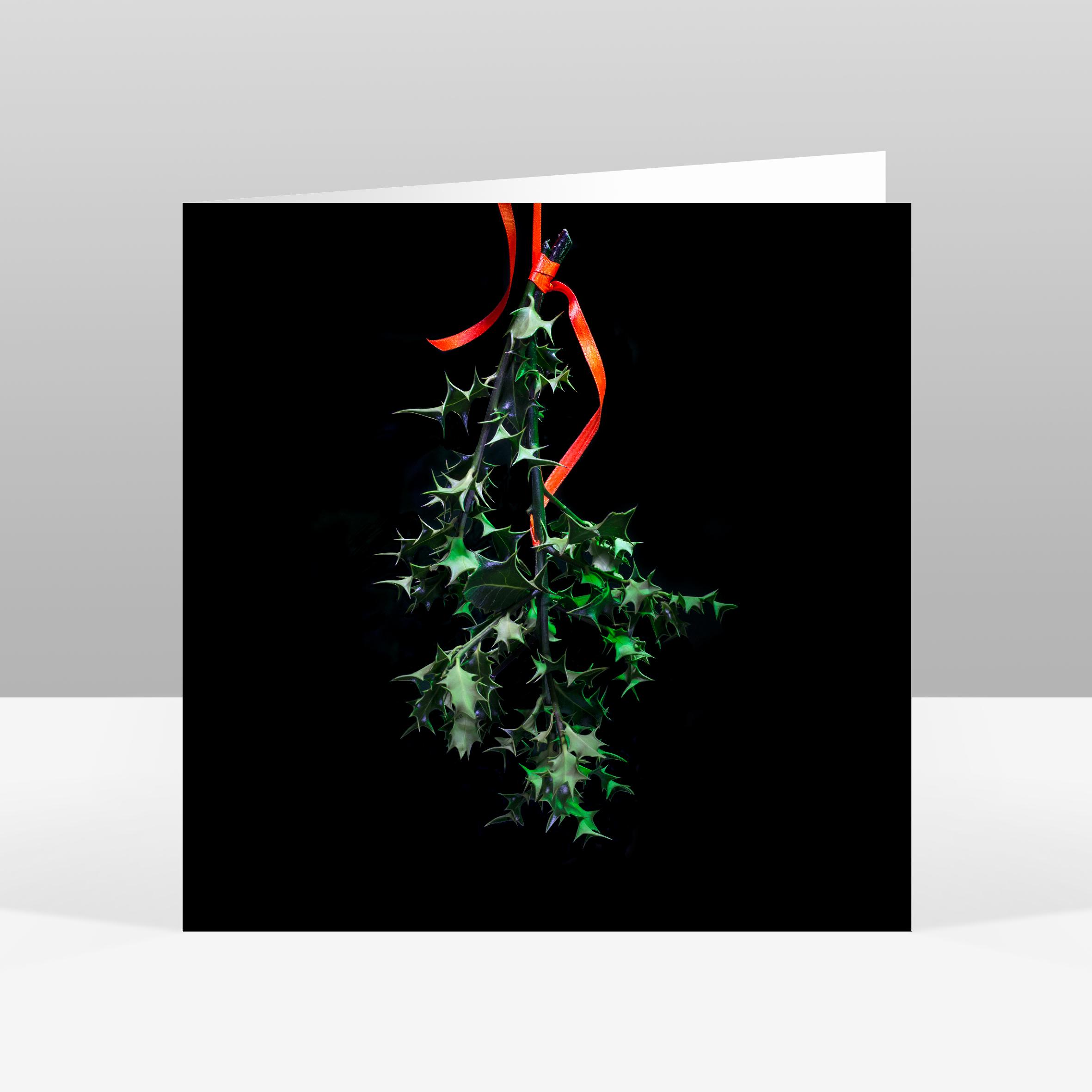 8 Holly Christmas Card Jo Hounsome Photography.jpg