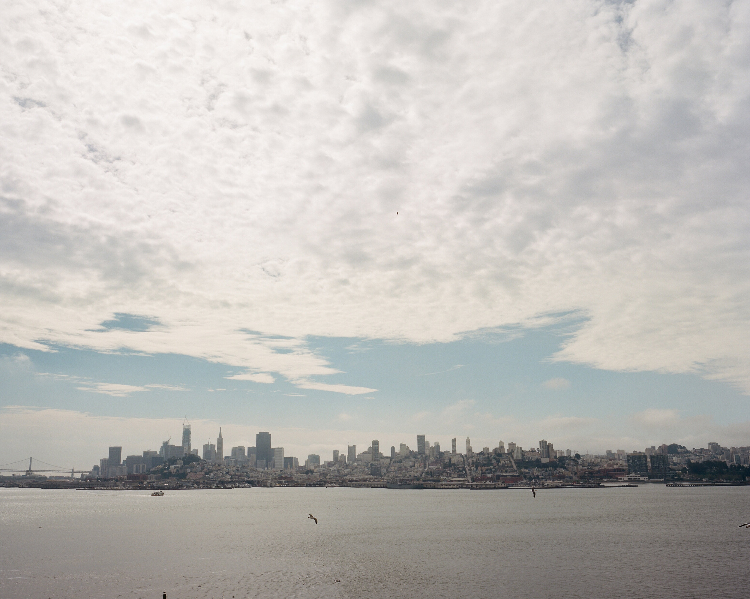 Frame 2  The view of San Francisco from Alcatraz Island