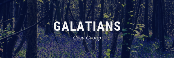 TRUTH - Galatians Book Study   As many of us read through the Bible, we often come up on stories and teachings that we wish to dive deeper into. Sometimes we hear a message on Sunday from one of the books of the Bible on Sunday and wish to go further. Here's your opportunity to do this with the Book of Galatians. This  Coed  group will meet on  Monday's 6:30 HOME  group.   Dennis Bishop and Ben Eiss