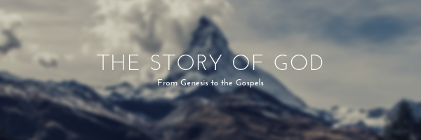 Telling the overarching Story from Genesis to the gospels, we participate in a narrative as practiced long ago. We learn from God's Story in and through our group interaction. Join this  Coed Group  in this interesting approach to the Bible on  Tuesday  evenings  6:30PM .   Dorothy Bair, Deb Howley and Laura Wilson