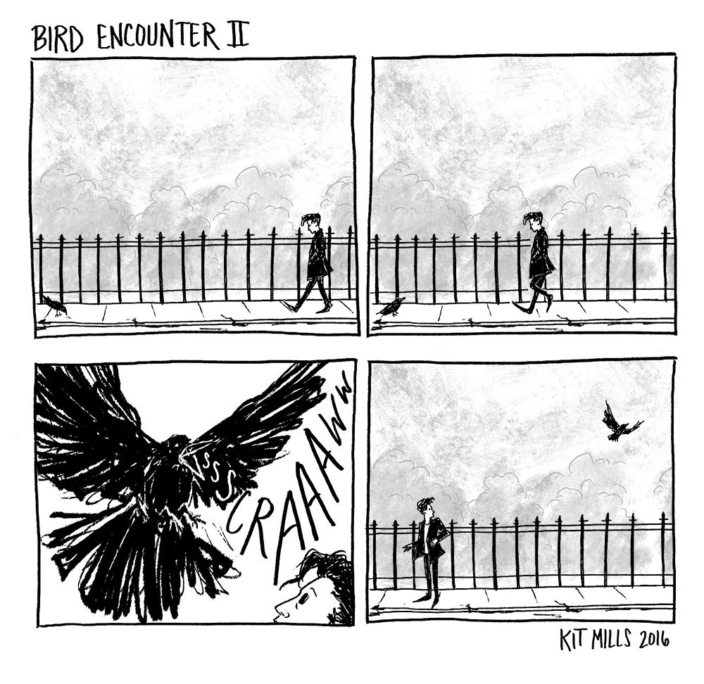 Bird Encounter II